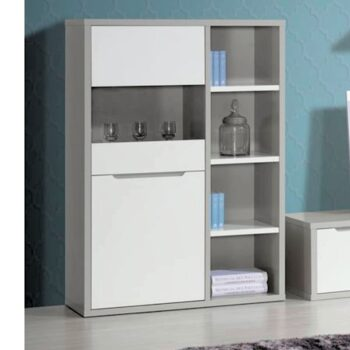 Viena White /Grey Display