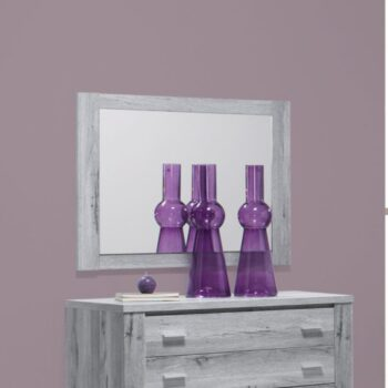 Florenca Grey Rectangle Mirror
